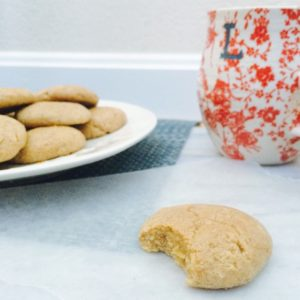 Low carb snickerdoodle protein cookies